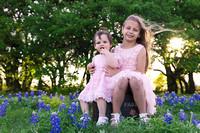 Round Rock Texas Premier Lifestyle Photographer-Harwood Blue Bonnet Photos-08211