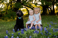 Round Rock Texas Premier Lifestyle Photographer-Picchena 2018 Blue Bonnet Photos-09167