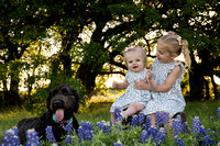 Round Rock Texas Premier Lifestyle Photographer-Picchena 2018 Blue Bonnet Photos-09180