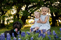 Round Rock Texas Premier Lifestyle Photographer-Picchena 2018 Blue Bonnet Photos-09181